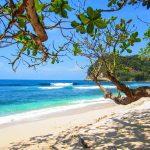 Disfruta de las mejores playas de Aruba