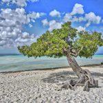 Playas y mar azul de Aruba